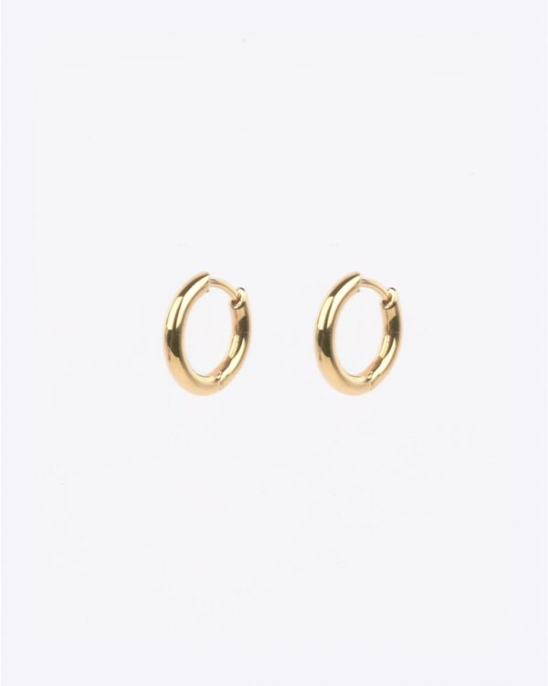 Boucles d'oreille Tom Wood Classic Hoop Small - Gold